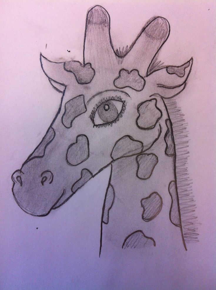 How to draw a giraffe recipe how to draw giraffes and for Giraffe draw something