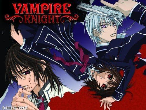 Vampire Knight Horror Anime Series