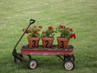 Such a cute idea! putting address on pots of flowers.