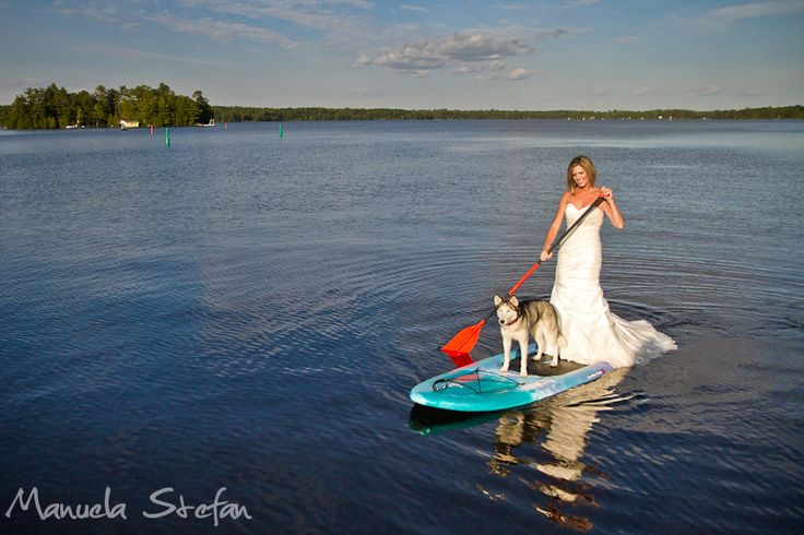 1000 Images About Dock Diving Big Air Dogs Dog Surfing Amp Water Sports On Pinterest Surf