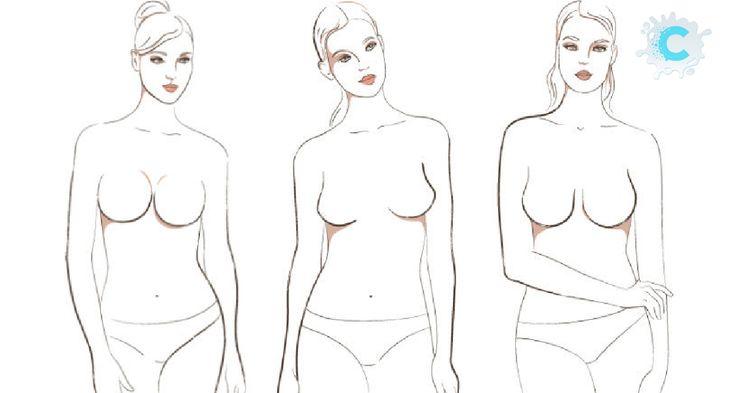 Что женская грудь может сказать о своей хозяйке?