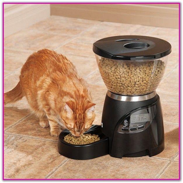 Automatic Wet Food Cat Feeder Australia Pet Needs Pet Feeder Cat Feeder Cat Food Brands