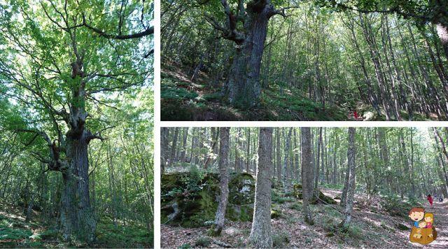 Cantabria con niños: Descubriendo el Valle de Valderredible | Con los niños en la mochila www.conlosninosenlamochila.com