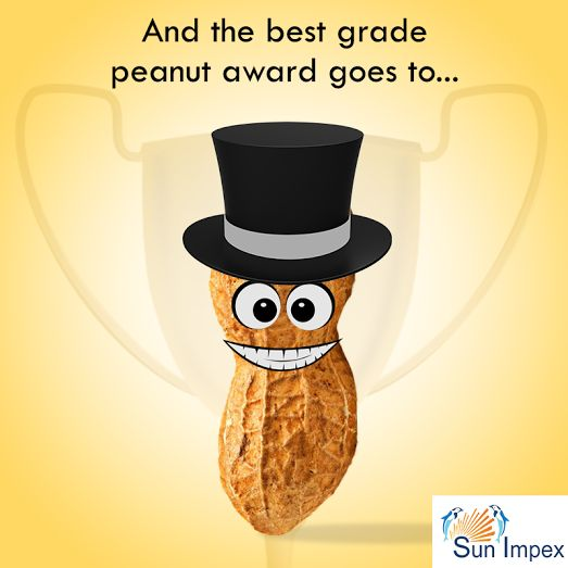 The award for best grade peanut goes to Sun Impex  We supply Bold and Java Peanut Kernels varieties. And are happy to announce that these are ready for supply . smile emoticon smile emoticon  To avail the best grade peanut visit : http://bit.ly/Pea_Nut  #Sunimpex #BestGradePeanut #Peanuts #Groundnut