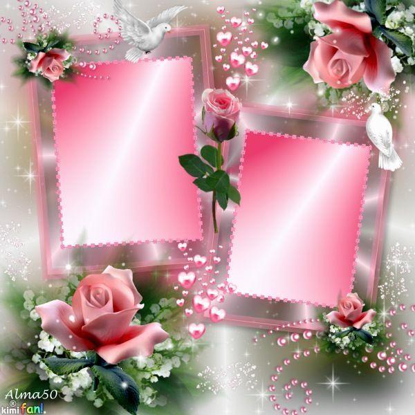Beauty In Frame: BEAUTIFUL ROSE FRAMES