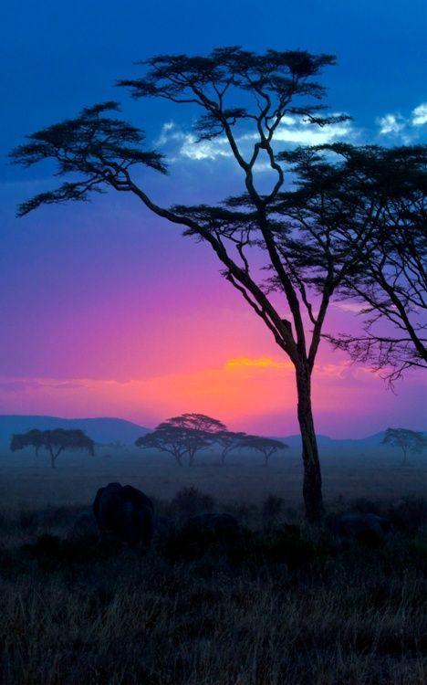African sunset.