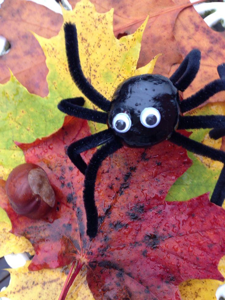 Spindel, spider Pyssel med kastanj och piprensare