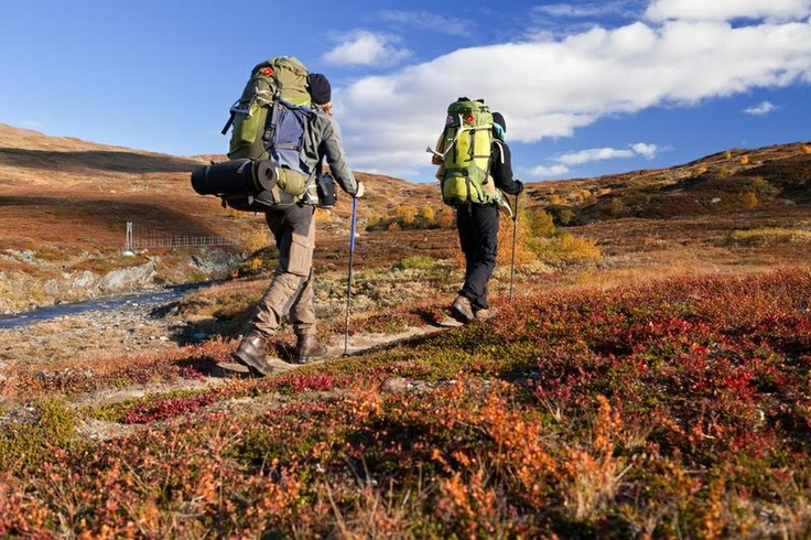 Trek or Ski Kungsleden (The Kings Trail), Sweden - Bucket List Dream from TripBucket