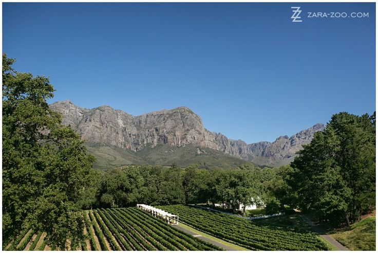 This view from the balcony of the Manor House at  MolenVliet Wine and Guest Estate in #Stellenbosch is insane!  Molenvliet is one of the top 10 #weddingvenues in #CapeTown.  Read our full venue review on the ZaraZoo Blog http://www.zara-zoo.com/blog/molenvliet-venue-review/