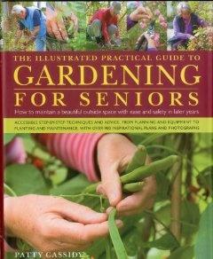 17 best images about gardening for seniors on pinterest for Low maintenance gardens for the elderly