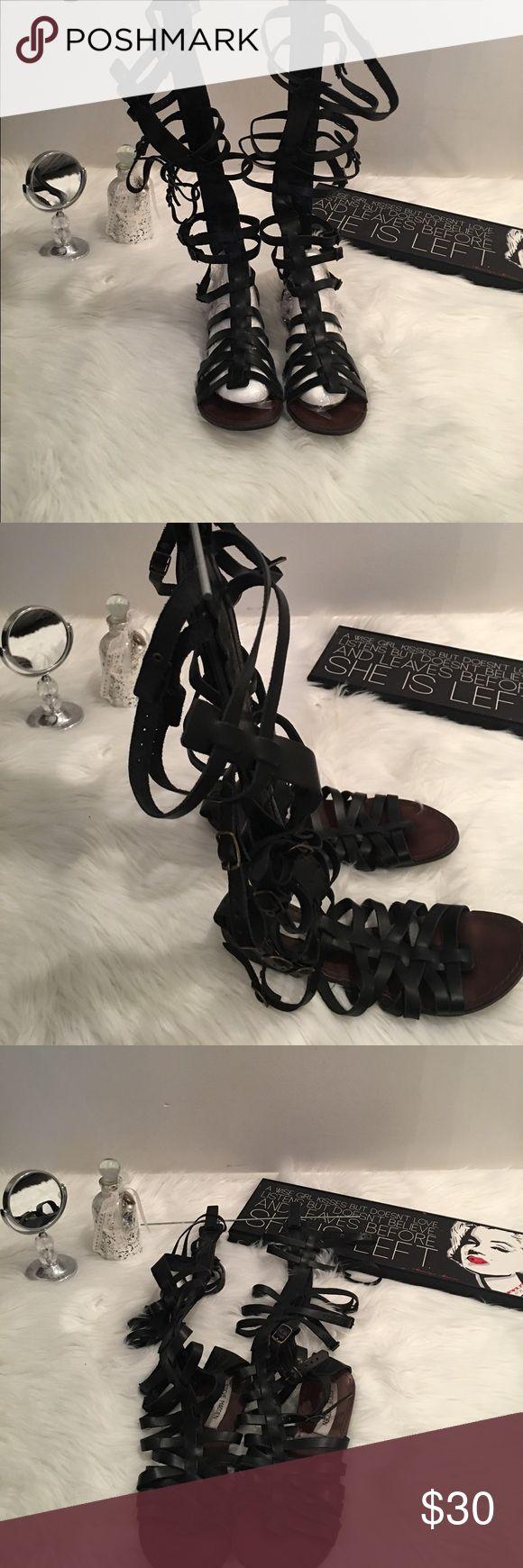 Steve Madden Gladiator Sandals Black Steve Madden Gladiator Sandals. Great Condition. Looks good with any outfit. Steve Madden Shoes Sandals