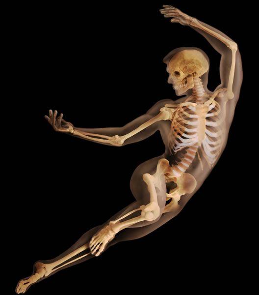 Skeleton Dance (Artist Unknown)