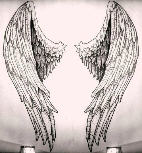 Esboço das asas angélicas.