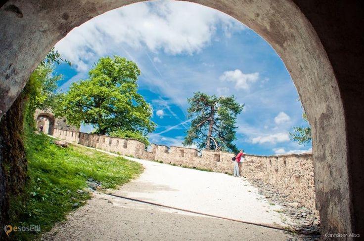 Замок Гохостервитц (Burg Hochosterwitz) – #Австрия #Каринтия (#AT_2) Burg Hochosterwitz - возвышающийся на доломитовой скале средневековый замок считается одним из красивейших в Австрии! http://ru.esosedi.org/AT/2/1000112707/zamok_gohostervitts_burg_hochosterwitz_/