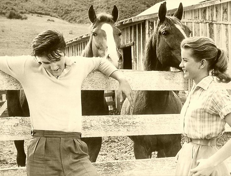 """""""Loving You"""" Dolores Hart:, her happiest/most abiding memory of Elvis came end of a day shooting scenes in the countryside.  """"There were some horses around, it was peaceful-we were laughing and enjoying being out there. He was standing by a rail and had his arms reaching out each side of it - one hand on one side, one hand on the other.  He was laughing and he put his head back. He was looking up to the sky and he was so beautiful and real, and for a moment he just looked so peaceful."""""""