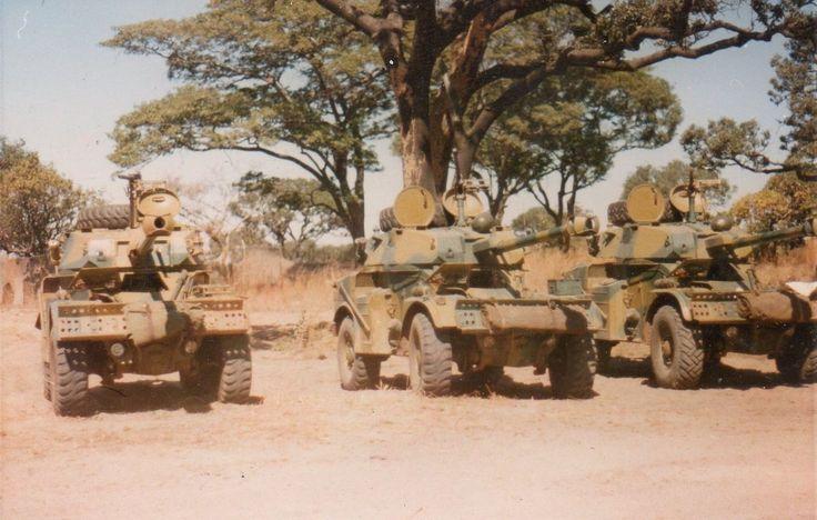 upload.wikimedia.org wikipedia commons thumb 6 6a Rhodesian_Eland902.jpg 1258px-Rhodesian_Eland902.jpg