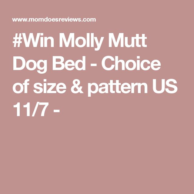 #Win Molly Mutt Dog Bed - Choice of size & pattern US 11/7 -