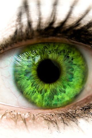 25 Best Rare Eye Color Images On Pinterest Beautiful
