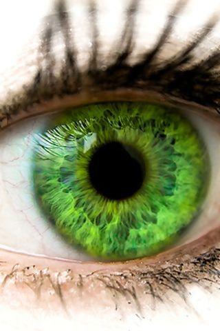 KLARE Augen - mit STARKEM AUSDRUCK in gold-grün, oder blau, gelbtürkis, bernstein oder braun von hell bis dunkel sind das Markenzeichen des Frühlingfarbtyps. Kerstin Tomancok Farb-, Typ-, Stil & Imageberatung