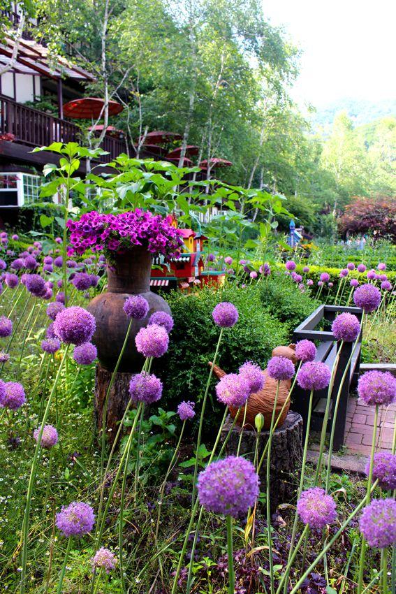 Farm Herbnara / Korea