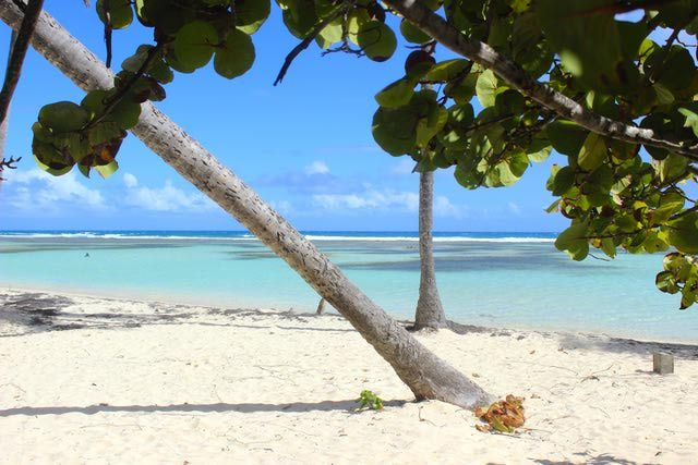 10 best beaches in Guadeloupe