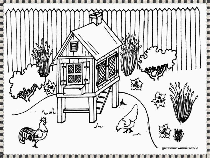 gambar mewarnai peternakan ayam