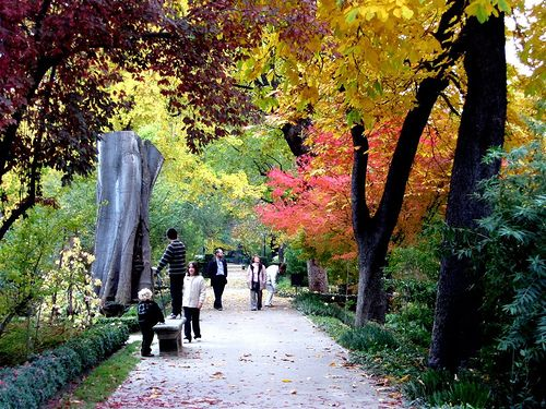 Stroll through the 30,000+ exotic plants and trees at the Real Jardin Botanico (located just outside the Prado Museum)