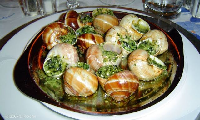 "Les Escargots de Bourgogne (Serves 4) : : : Facts: Most of the escargots that are eaten come from France. Their cultivation is strictly regulated by the food and safety arm of the government. The escargots are cultivated in a ""cage"" configuration that doesn't enable any of them to set foot on the ground. The more famous and well known of these species is the Escargots de Bourgogne, which are of the larger variety. They can be found in most supermarkets and are sold in cans of a dozen."