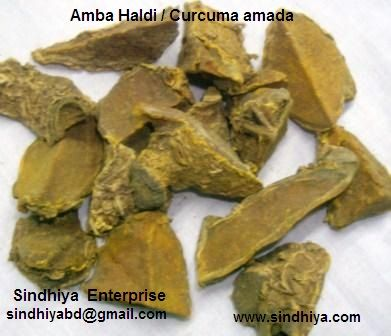 Buy Best quality Curcuma amada / Amba HaldiHerb Medicine on bdtdc.com
