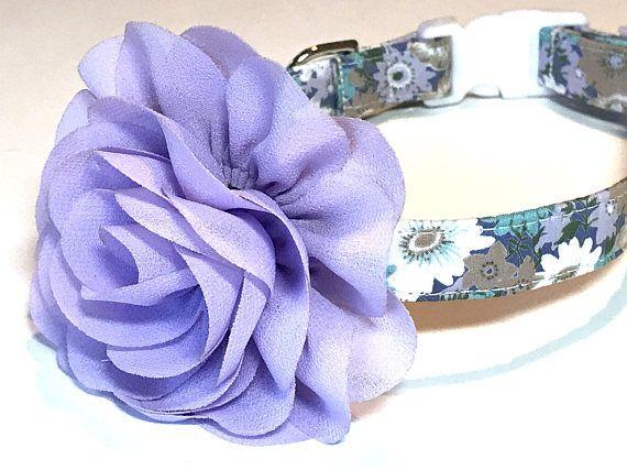 Purple Dog Collar Girl Dog Collar Floral Dog Collar