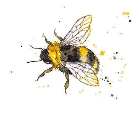#bees #colour #bugs Amy Holliday Illustration : Pattern Design // Honey Bee & Bumble Bees