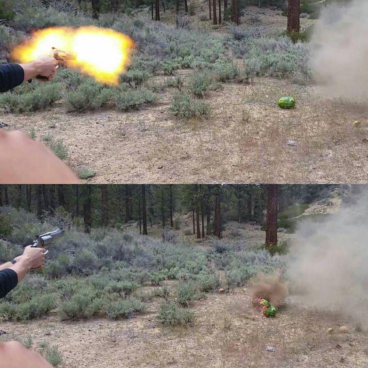 My brother shooting his S&W 500 at an attacking watermelon. Thank goodness he had his 500 handy. #SmithAndWesson #460 #500 #galco #hornady #gun #revolvers #pistols #handguns #shooting #shootingday #firearms #magnum #guns #revolver #pistol #handgun #damn #powerful #fireball #power #caution #epic #freedom #leatherholster @wolfdiamond93 by scdiamond91