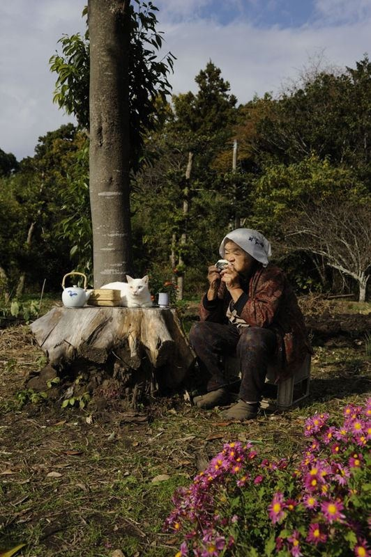 Miyoko Ihara has been taking photographs of her grandmother, Misao and her beloved cat since their relationship began in 2003. Their closeness has been captured through a series of lovely photographs. 3-09-13 / Miyoko Ihara