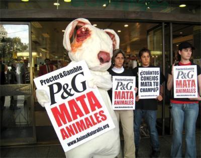 Conejo Gigante Protesta por el Fin de las Pruebas en Animales (España)   Agrupación para la Defensa Ética de los Animales (ADEA)