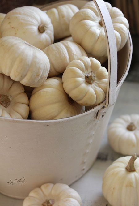 ♔ White pumpkin