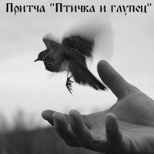 """Притча """"Птичка и глупец"""""""