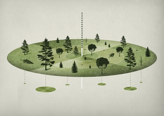 Bayerische Staatsforsten - substudio*design.media | Michael Paukner