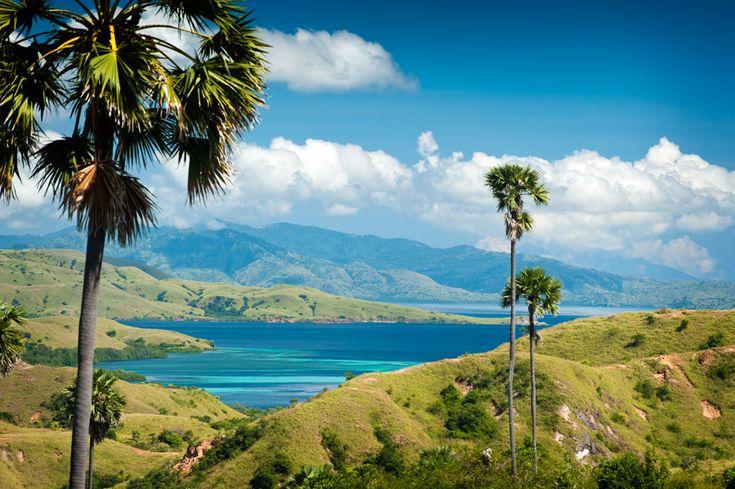 インドネシア「コモド島」で見たい景観ランキング | wondertrip 旅行・観光マガジン