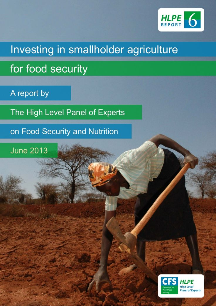 hlpe-report-on-investing-in-smallholder-agriculture-ggagriculture by Growth Green Agriculture (GG Agriculture) via Slideshare