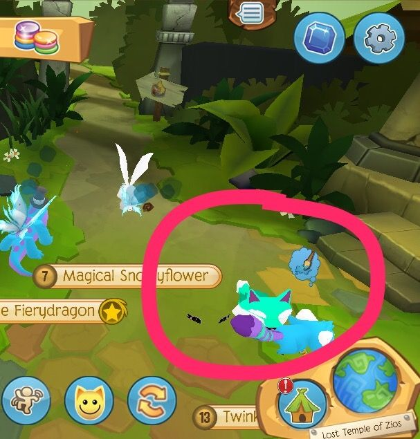 Ummmm Are You Ok Little Dire Wolf With Images Animal Jam