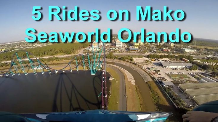 Mako Hyper Roller Coaster On Ride HD POV - 5 Rides - Seaworld Orlando