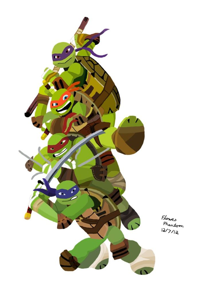 52 best Ninja Turtle Birthday Party images on Pinterest Ninja