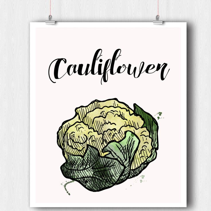 Kitchen Print - Vegetable Print - Cauliflower Watercolor Print - Printable Wall Art - 8 x 10 Minimalist Art - Wall Art- Instant Download PDF by ratitaprints on Etsy