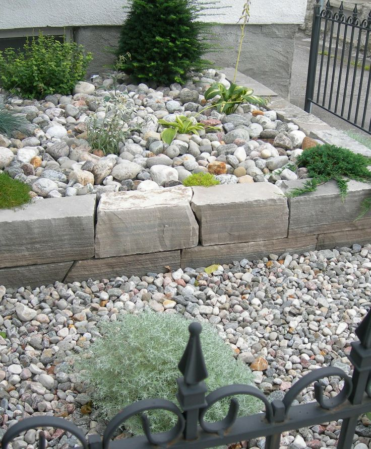 Top 70 Best Desert Landscaping Ideas: 61 Best Images About Desert Garden On Pinterest
