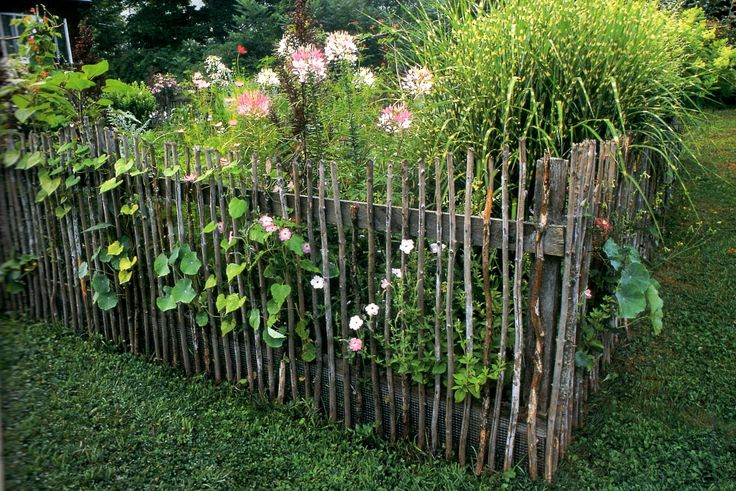 I've started collecting sticks to make this fence around my new vegetable garden. Will post a photo of my fence when completed. This photo is from the book Garden Fences, Walls and Hedges by Kathy Sheldon