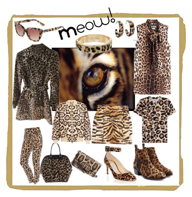 """Animal print, leopard print, stinavilla, wardrobe consultant, personal stylist  """"The cat goes meow!"""" by cricri123 on Polyvore featuring Louis Vuitton, Boutique Moschino, Pierre Hardy, Jimmy Choo, Derek Lam, Marc by Marc Jacobs, Cole Haan, Alexa Starr, Balmain and Michael Kors"""