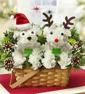 Santa Paws: Our holiday hound-shaped a-DOG-able® arrangement is coming to town, ready to deliver smiles! Hand-arranged from fresh carnations and fragrant greens inside a willow dog bed, he's decked in a Santa hat and glasses and accented with festive ornaments. Pair him with our Santa's Best Reindeer™ arrangement and guide your special someone to a truly original Christmas. www.bestflowers.com