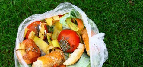 Richtig Müll trennen: Bioplastik darf nicht in den Biomüll.