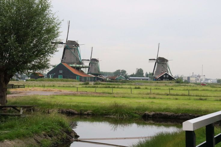 #countryside #dutch #grass #green #holland #nature #netherlands #river #stream #tradition #wind #wind mills