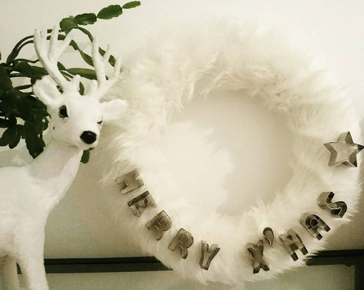Adventi koszorú! Karácsony! Szőrmés! Advent wreath! Fur! Merry X'mas